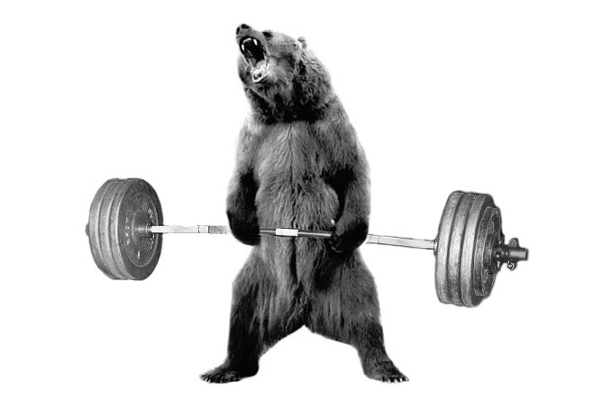 BearUNLV Workout Building Blocks